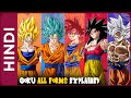 Goku All Forms And Transformations Explained IN HINDI | Super Saiyan God & Ultra Instinct Explained