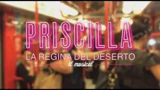 "PRISCILLA MUSICAL Italian Cast singing "" I Will Survive "" -  Milan Subway"