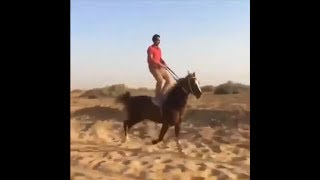 I GOT THE HORSES IN THE BACK