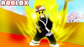 Roblox NINJAGO ASSASSIN - BABY DUCK GETS A NEW SHINOBI