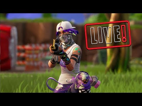 Fortnite Season X On The Grind To Level 80 Day 22 Of Season X