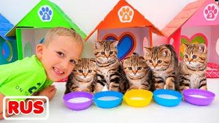 Влад и Никита играют с котятами