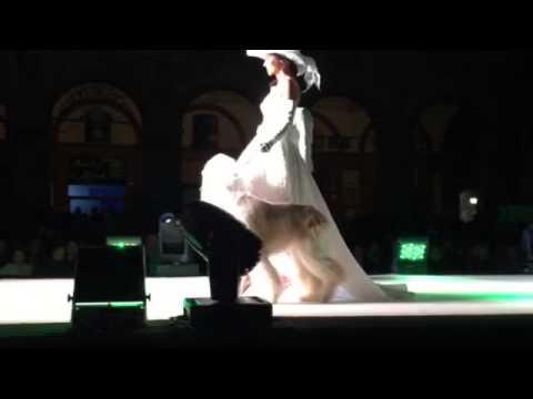 """Havana & Lucy """" notte di stelle....fashion night """" a Tolentino"""
