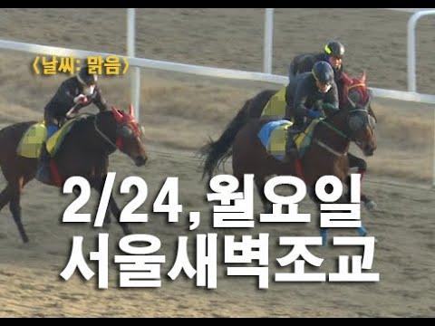 2020.1.24 서울 새벽조교 동영상