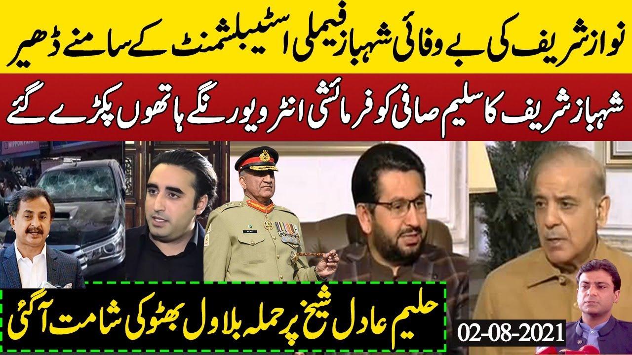 Shehbaz Sharif Family Establishment K Agay Surrender &Saleem Safi Exposed|Haleem Adil Sheik &Bilawal