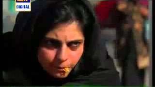 Dehleez By ARY Digital, Episode 195, Drama Serial, 5th February 2014