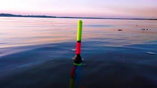 АКТИВНЫЙ КЛЁВ КАРАСЯ перед морозами РЫБАЛКА НА ПОПЛАВОК ОСЕНЬЮ НА РЕКЕ ДУШЕВНАЯ рыбалка на реке