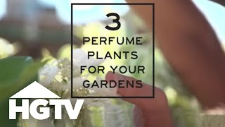 3 delicious smelling plants for your garden hgtv