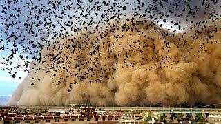 Co się dzieje z NASZĄ planetą? Dziwne zdarzenia mają miejsce na całym świecie