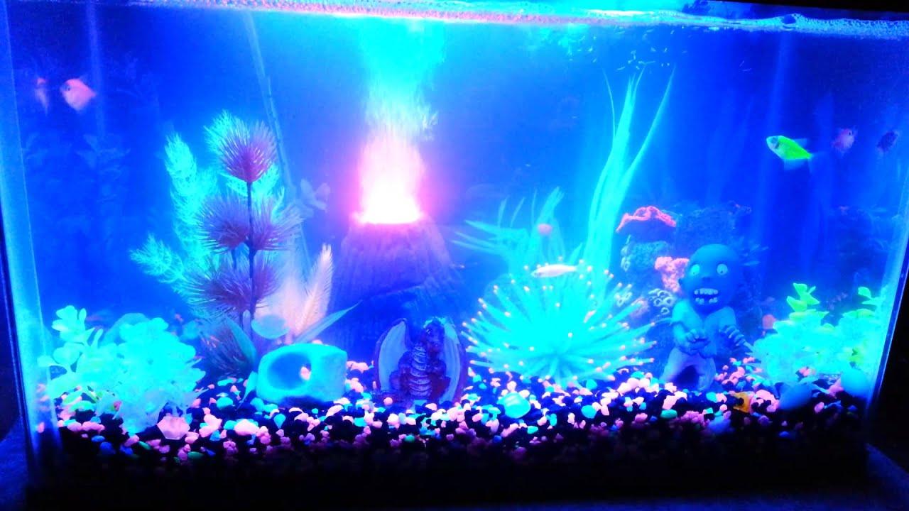 Glofish Tank 10 Gallon Aquarium Youtube