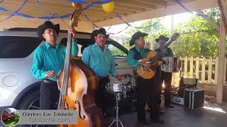 El Venadito - Chirrines Con Tololoche 818-290-4645