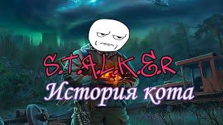 Сталкер История Кота