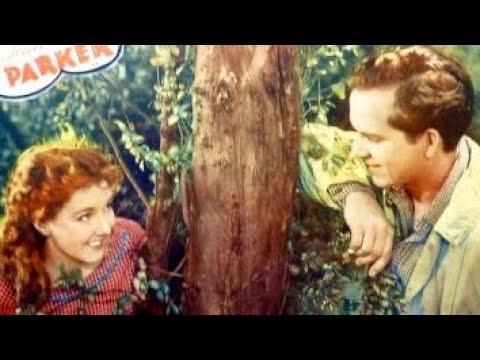 "❤""Romance of the Limberlost (Girl of)"" Classic Movie TCM Free Old Movie--Gene Stratton Porter1930s"