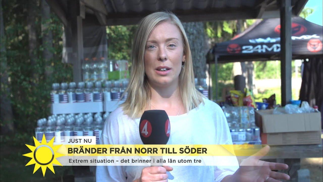 """Prognosen för skogsbrand i Ljusdal: """"Idag släcks inga bränder""""  - Nyhetsmorgon (TV4)"""