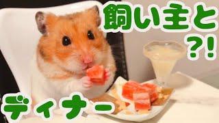 チャンネル登録よろしくお願いします☆ Please subscribe to my channel ...
