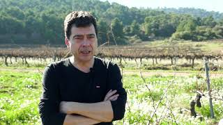 Tomàs Cusiné. Empresari i vitivinicultor