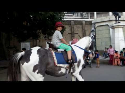 7 Year Old Child Enjoy horse riding at Mall Road, Shimla, Himachal Pardesh
