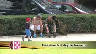 Plzeň v kostce (16.6.-22.6.2014)