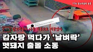 감자탕 먹다가 날벼락...멧돼지 출몰 소동 / YTN (Yes! Top News)