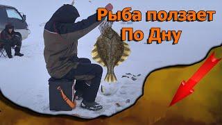 Я в шоке от такой рыбалки Рыбные места в заповеднике нас шокировали