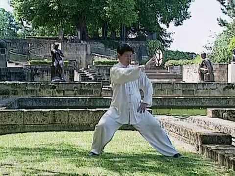 Tai Chi Lessons with Master Jian Liujun