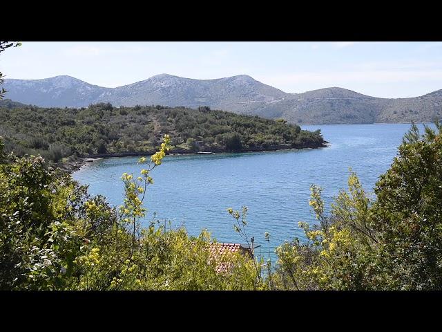 Netaknuta priroda : Otok Rava