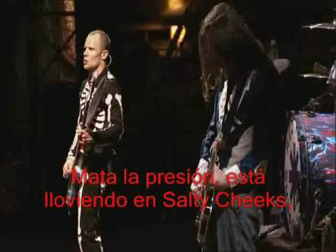 Red Hot Chili Peppers - Parallel Universe live at Slane Castle (traducida) music