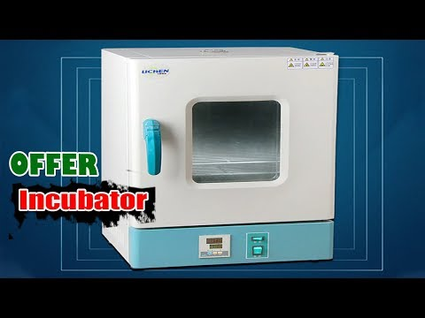 36L Electrothermal Constant Temperature Incubator Ali Express WOW Tech Review