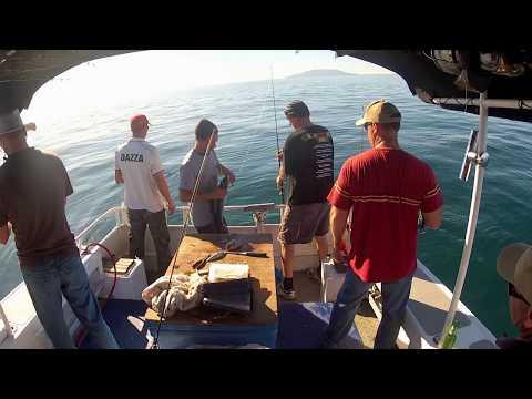 Fishing Charters Auckland, Hauraki Gulf, New Zealand.