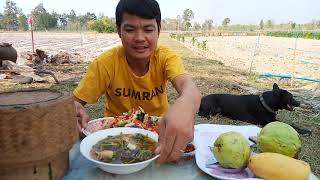 ต้มซั่วปลาดุกซดฮ้อนๆ ยำผักเห็ดรวมมิตร จำแจ่วบอง บรรยากาศท่งไฮท่งนา