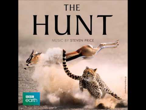 BBC - The Hunt  Soundtrack