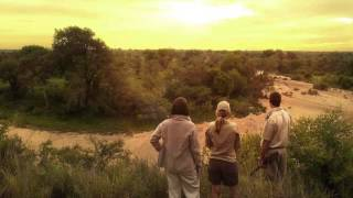 Tanda Tula Field Camp, Timbavati Private Nature Reserve, Greater Kruger