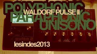 Waldorf Pulse 2 -- POLYPHONIC = Paraphonic + Unisono Sounds
