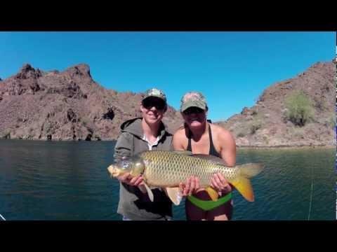 Lake Havasu Fishing Youtube
