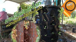 คอนโดผักรักโลก เปลี่ยนขยะเป็นปุ๋ย เลี้ยงไส้เดือนในตัว | Garden Tower