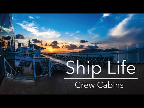 What Are Cruise Ship Cabins Like? | Ship Life