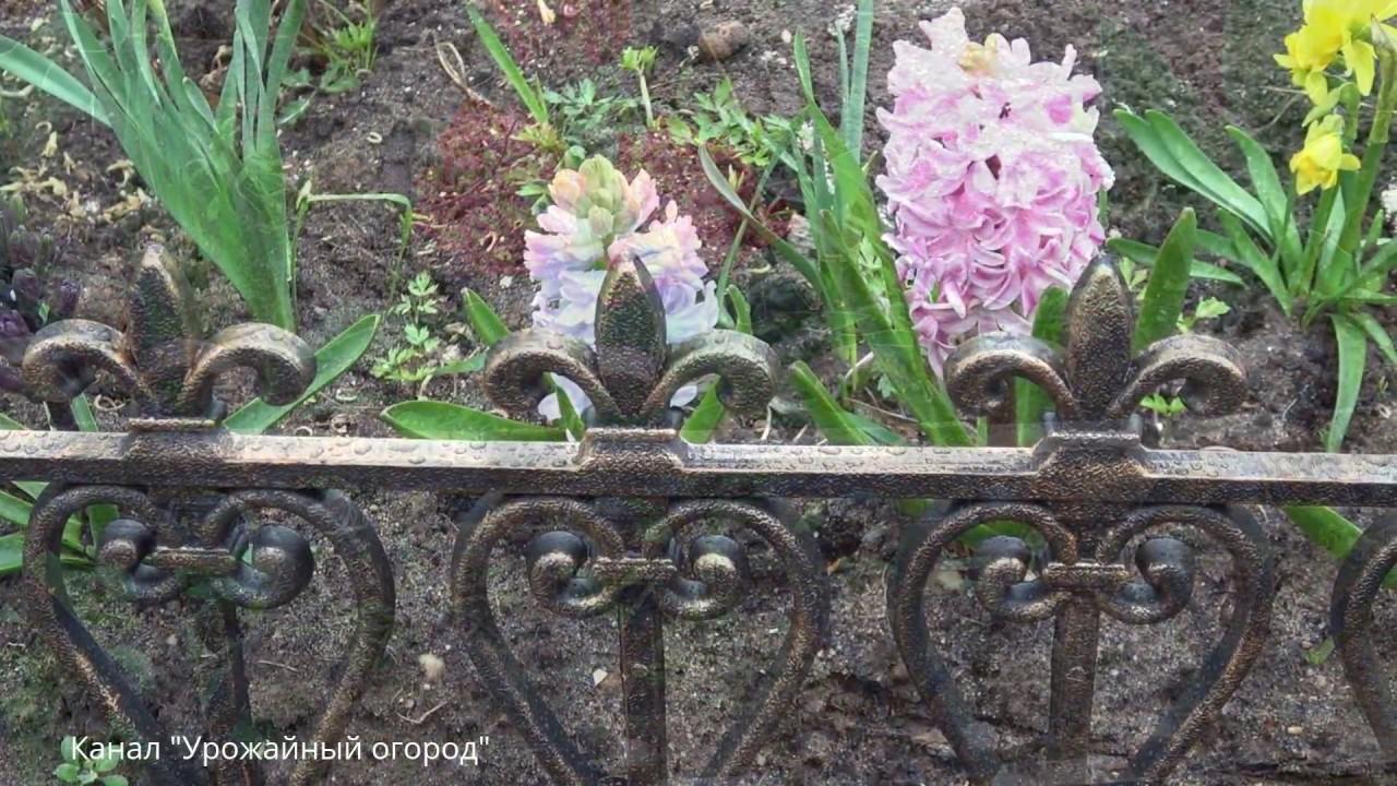 Красивые цветки своими руками