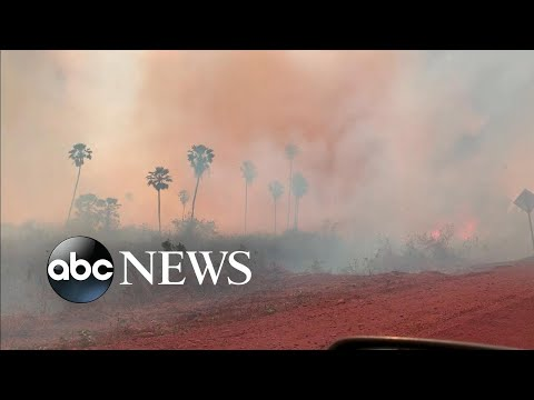 Bolsonaro promises 'solution' to 'give the world satisfaction' as Amazon fires rage l ABC News