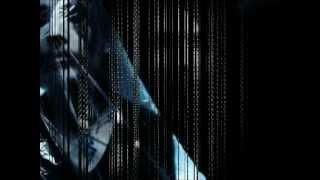 MARILYN MANSON- THE GARDENER WITH LYRICS