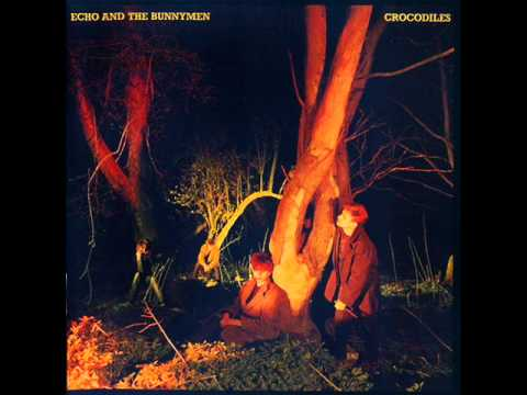 Echo & the bunnymen - Crocodiles 1980 (full album)