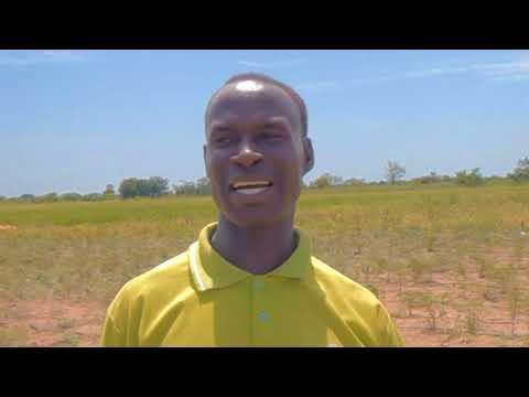 Coopération Sud-Sud Algérie Togo: Pratiques agricoles pour renforcer la sécurité alimentaire