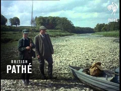 Fly Fishing (1955)