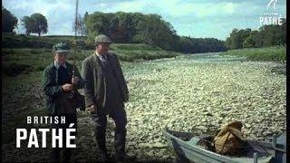 fly fishing 1955