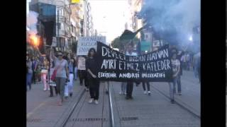 Tram driver hits animal rights activists in Turkey