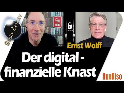 Der digital-finanzielle-Knast - Ernst Wolff bei SteinZeit