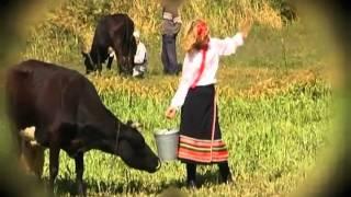 """Шуточный ролик """"Микола комбайнер""""  (by A&A)"""