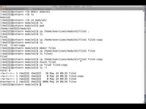 Linux: cp, mv, rm, mkdir, rmdir
