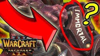 Warcraft 3 Reforged Diablo Immortal?