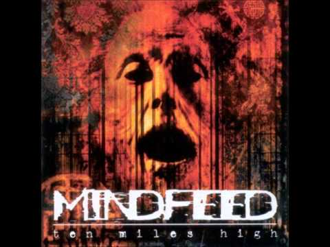 Mindfeed - Cold Smile
