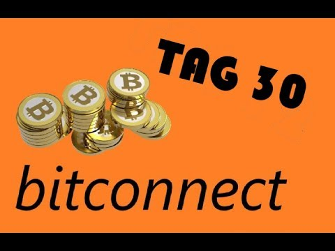 Tag 30 Bitconnect, Control Finance 30-40% Gewinn im Monat ! / Tutorial Deutsch